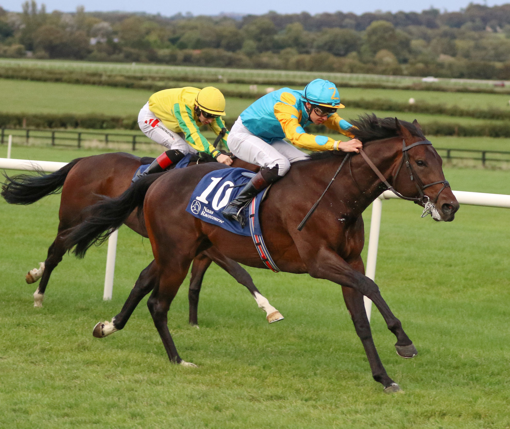 Full Brother to Old Glory Among Five Marlhill Yearlings Heading To Goffs Orby Sale